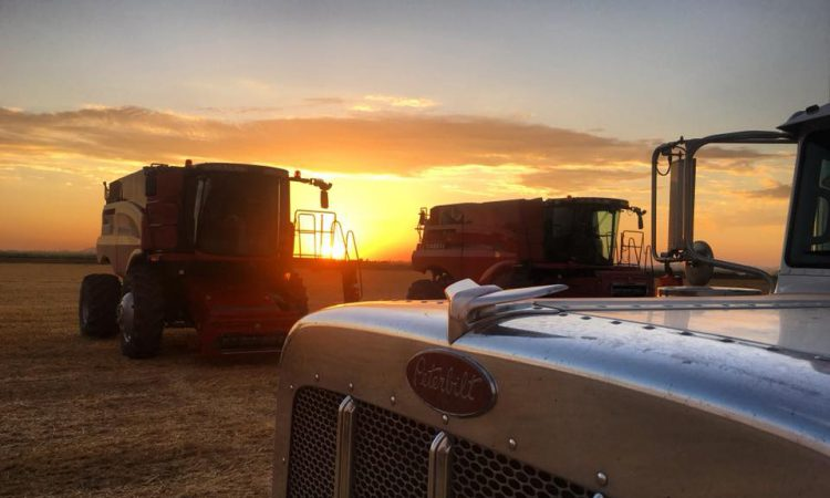 'Experience of a lifetime': Irish drivers wanted for combine crew…based in US