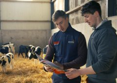 Maximising calf efficiencies on a 130-cow dairy farm in Co. Laois