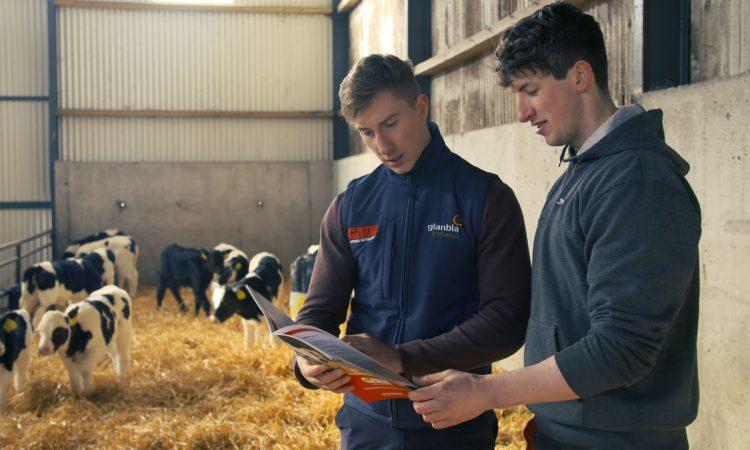 Maximising calf efficiencies on a 130-cow dairy farm in Co. Laois