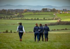 Aileen Barron: Who are the best brand ambassadors for your agri-business?