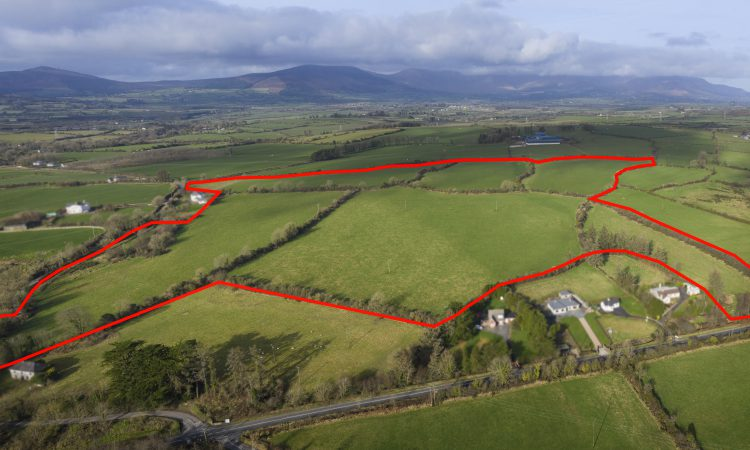 Roadside lots offer development potential and more – to go for public auction