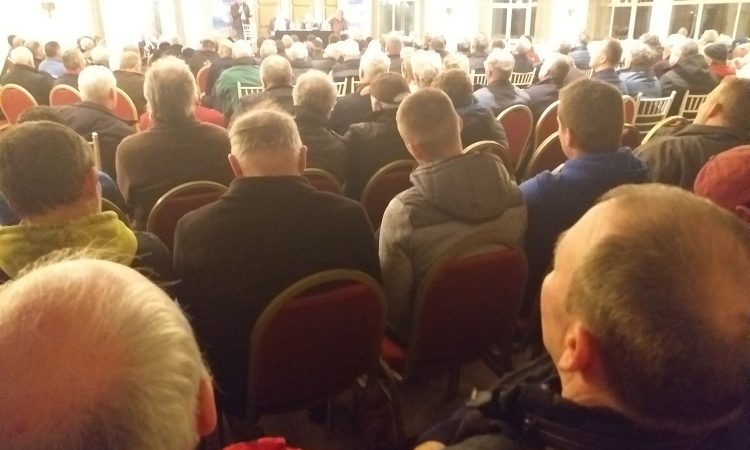 IFRG reiterates calls for €300/cow suckler scheme and new REPS