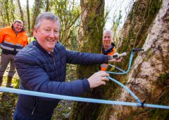 Minister Canney marks beginning of 'new harvest' for Bord na Móna