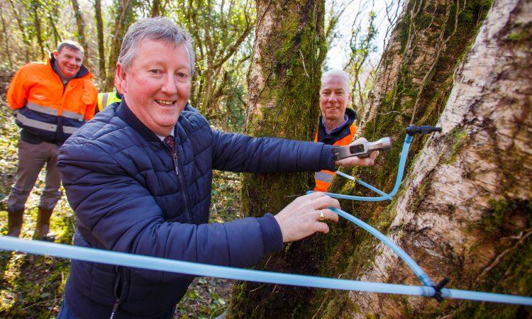 Minister Canney marks beginning of 'new harvest' for Bord na Móna
