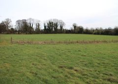 'Rose View': Agricultural land on 71ac with 140m of road frontage – to go on the block