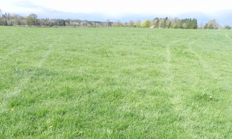 Looking for land in the heart of Co. Longford? Take your pick of 2…