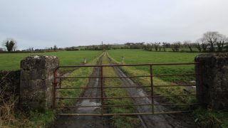 'Vulture fund must engage' following auction removal – IFA