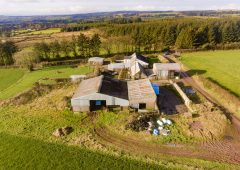 Permanent pasture, forestry and outbuildings…for sale on a 79ac residential holding