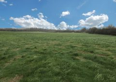 Looking for a change of scene? 18ac roadside holding may have development potential