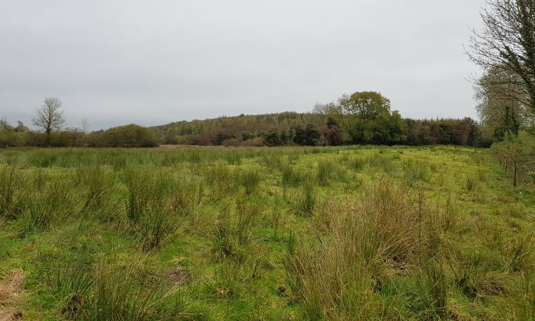 35ac residential farmland fully equipped for stock holding