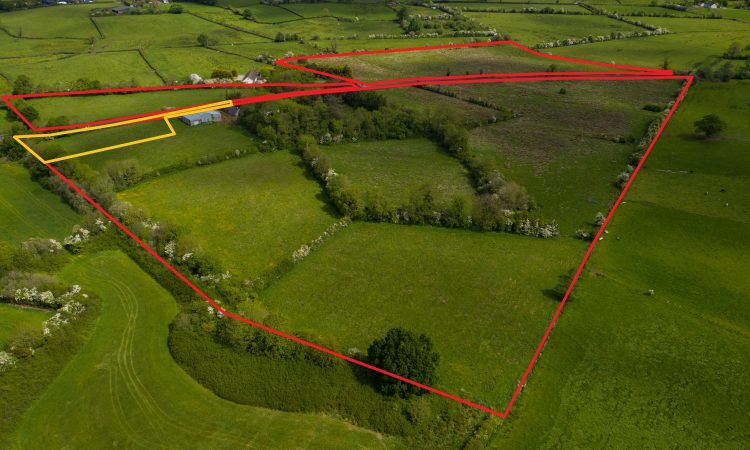 On the market: 33.85ac farmland 'would suit a small livestock operation'