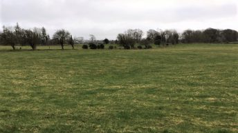 Residential farm in Galway guiding at €9,000/ac – in one division