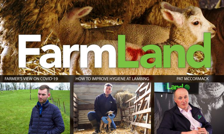 This week's FarmLand: Covid-19, river management and hygiene at lambing