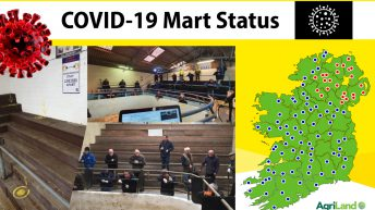 Mart status: Updates and commentary as marts given permission to reopen [ongoing]