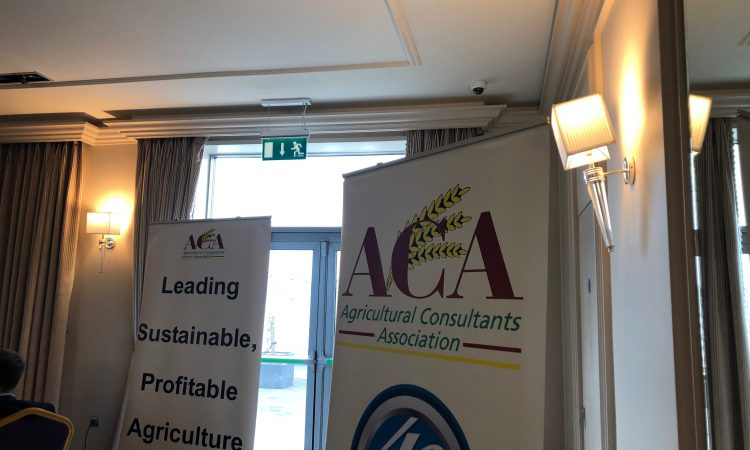 Funding for consultant training 'historic and significant' – ACA