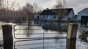 'Farmers are sick of excuses for inaction' on flooding problems – IFA