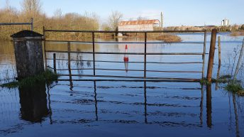 Letter to the editor: 'Flooding – is bog restoration a way out?'