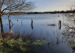 State itself 'responsible for confusion that's compounding' farm flooding problems