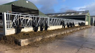 Dairy focus: Big changes afoot in Pallaskenry Agricultural College
