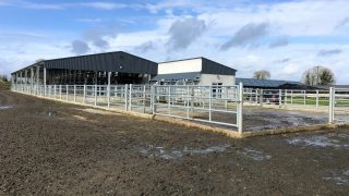 Dairy focus: 'Maximising comfort and minimising stress' with new facilities in Gurteen
