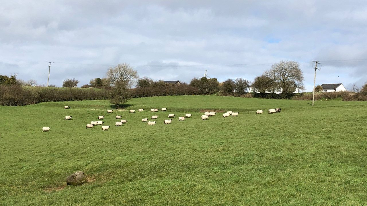 Latest coronavirus updates for farmers…as they happen [April week 5]