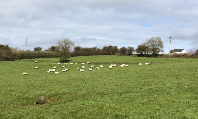 Latest coronavirus updates for farmers…as they happen [April week 4]