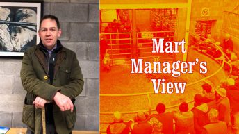 'Closure of marts has had a knock-on effect on factory prices' – Carnew's David Quinn