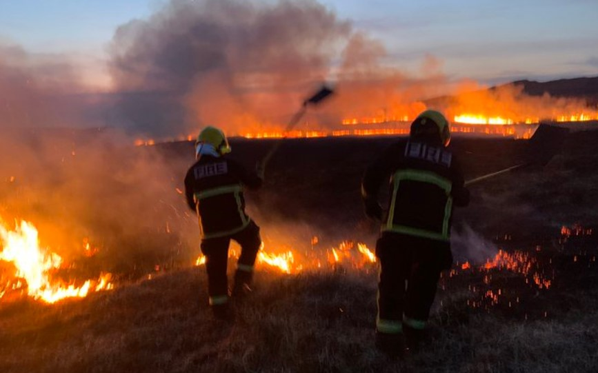 Fire crews battle gorse fires in the south
