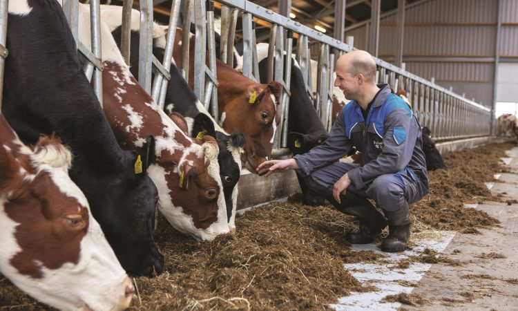 Parlours that work for your farm, whatever your size or ambitions