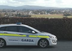 File for DPP following post mortem exams in Cork farm shooting case
