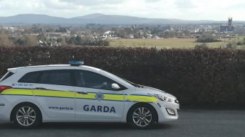 Calls to establish specialised Garda unit to tackle wildlife crime