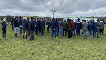 Large crowds descend on Carlow-based calf-to-beef farm for first walk of 2020