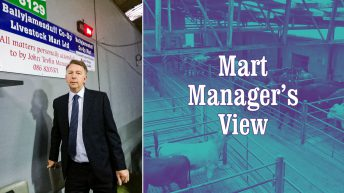 'We had a record number of cattle sold in July' – John Tevlin