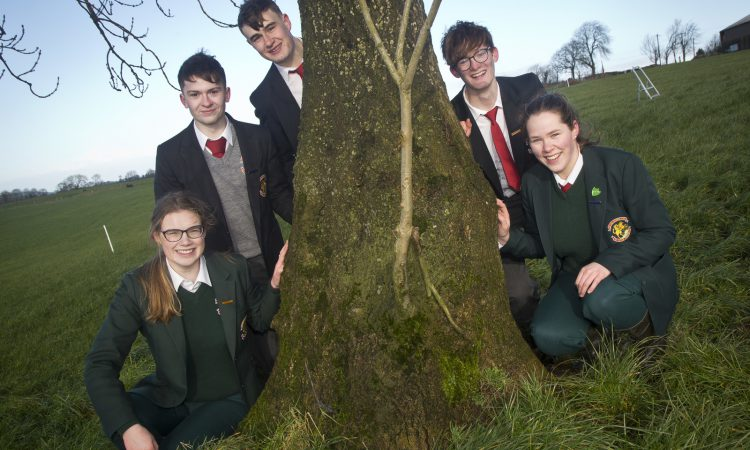 Schools comp winners: Irish Angus is 'the all-rounder'
