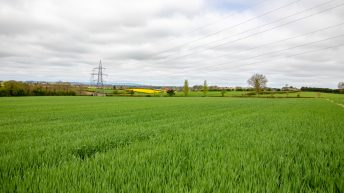 'Logic suggests that we should be trying to increase our tillage area'