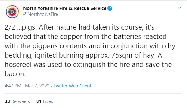 Pig eats pedometer, sparks fire in North Yorkshire, UK