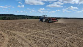 Grain price: Bearish; keep an eye on weather