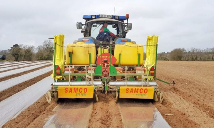 Maize or beet…are you growing on contract?
