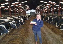 Cheshire dairy producer's calving season tightens with novel feed additive