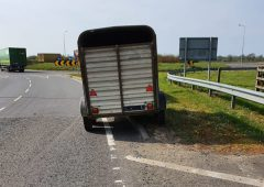 Farmer collecting animal sent home from Garda checkpoint