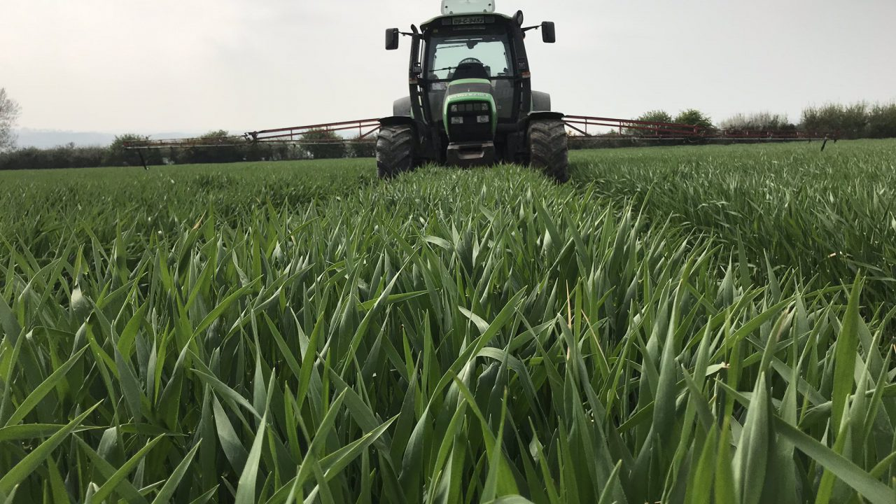 Tillage Focus: Building a sustainable business in Co. Waterford