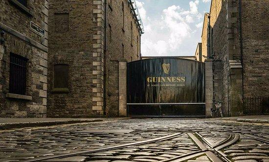 Guinness Storehouse apologises for incorrectly putting Kilmullen Farm on menu