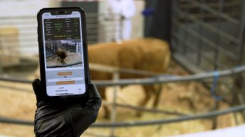 Criticism of delay in funds for online bidding equipment for marts