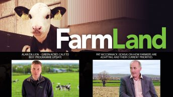 This week's FarmLand: How are dairy and beef systems adapting to Covid-19?