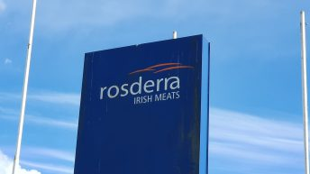 China suspends pigmeat imports from Rosderra plant