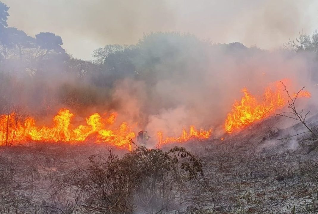 Fire risk notice issued due to dry conditions