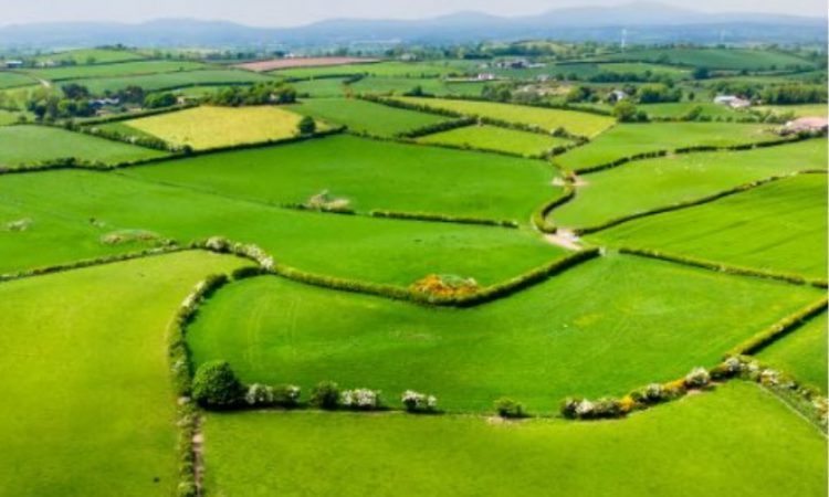 Department outlines key changes in new land mapping system for payments