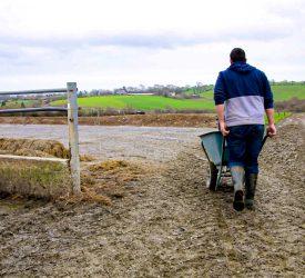 CAP 'gap' in funding for young farmers – Macra