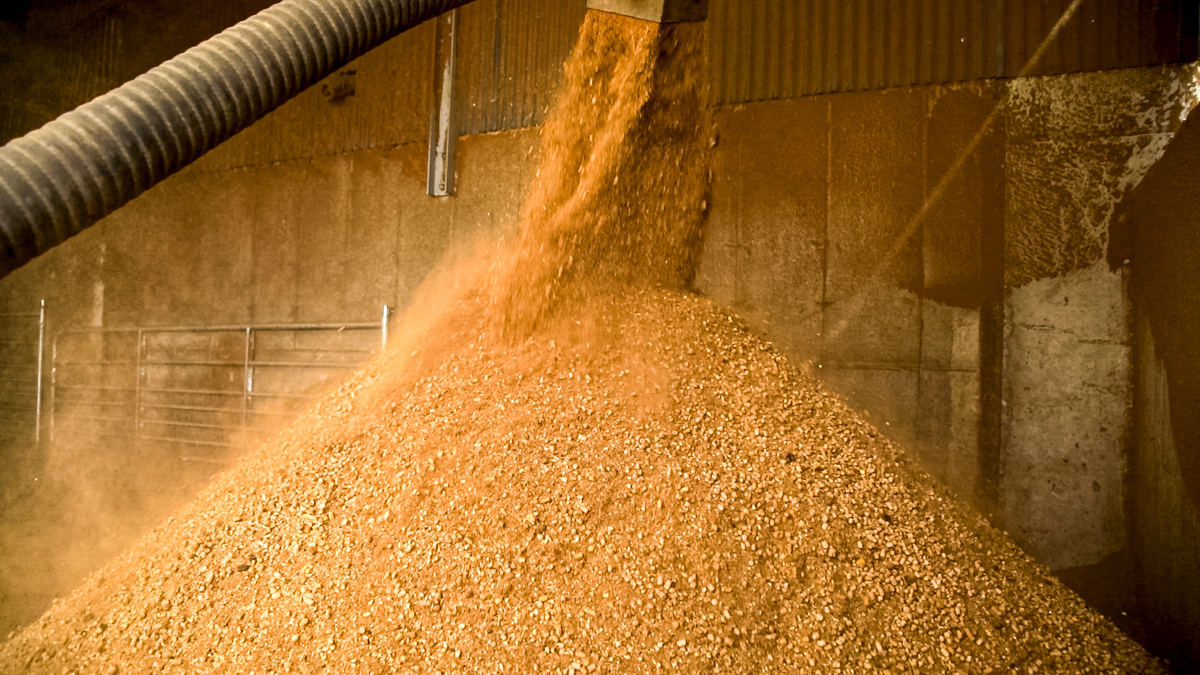 Feed materials now at contract high levels -IGFA