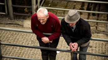 'Essential and vulnerable' – farmers 'do not have the luxury of isolation'